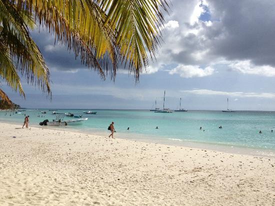 Barcelo Bavaro Beach - Adults Only: Strand auf Ausflug zur Insel Saona