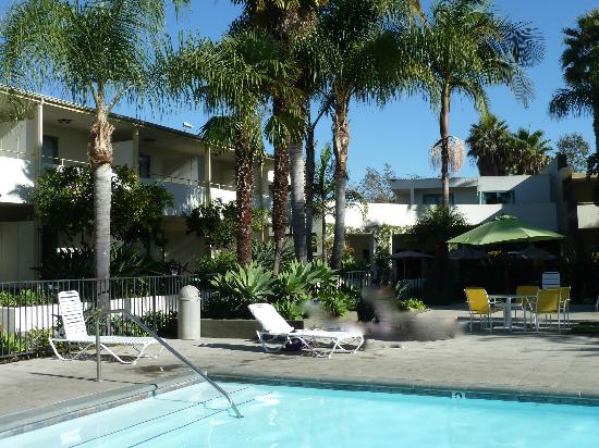 Lemon Tree Inn: Swimminpool with palmtree garden