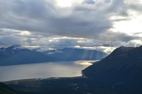 Hotel Alyeska : From the top of the tram