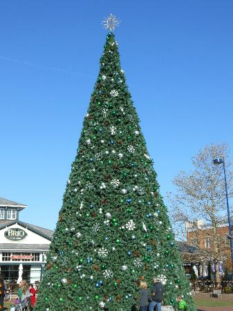 Courtyard Columbus Easton: Christmas Tree lighting at Easton Town Center