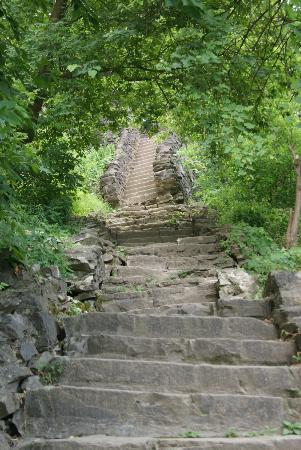 Niagara Gorge Trail: A section of the many stairs to the gorge trail.