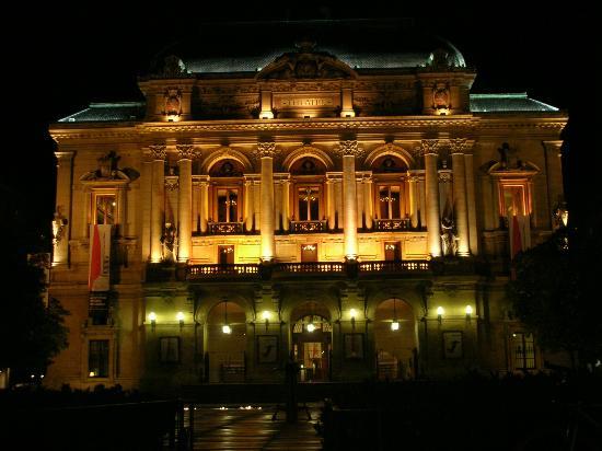 Hotel du Theatre : Theatre des Celestins at night