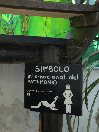 写真Itour Mexico枚