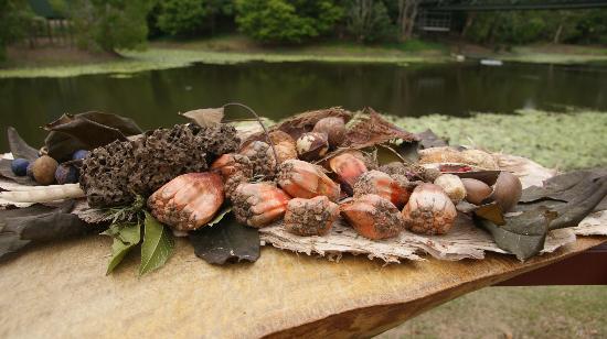 Tjapukai aboriginal cultural park caravonica australia for Australian cuisine brisbane