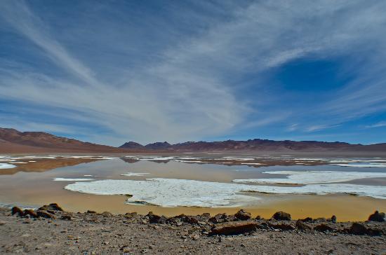 Awasi Atacama - Relais & Chateaux: Morning drive