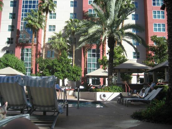 Hilton Grand Vacations at the Flamingo : Grounds at HGVC pool