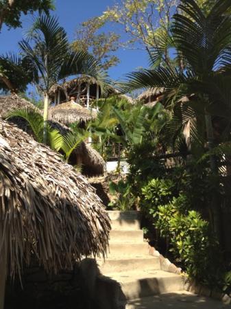Cabanas Biuzaa': las Cabañas
