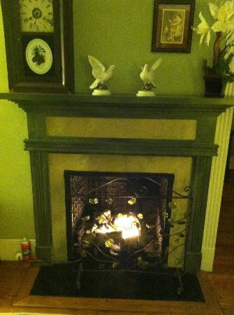Inn at Meander Plantation: Fireplace in Col. Fry Suite