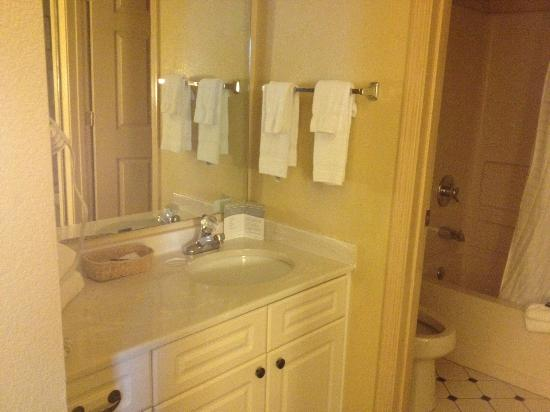 Extended Stay America - Orlando - Convention Center - Universal Blvd: Bathroom
