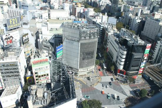 Shibuya Excel Hotel Tokyu: View from room
