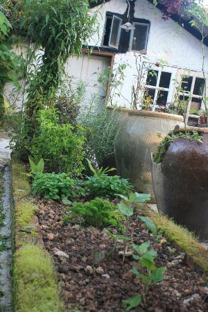 Planters Country Hotel & Restaurant: Spice garden
