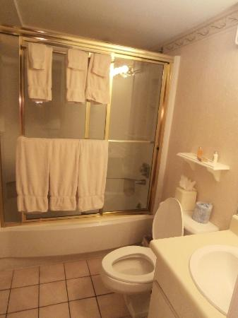 Plaza Suite Hotel Resort: one the two of the bathrooms