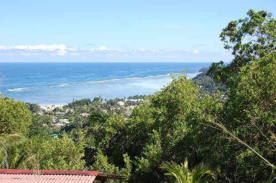 Albizia Lodge Green Estate: View from Room 3 balcony