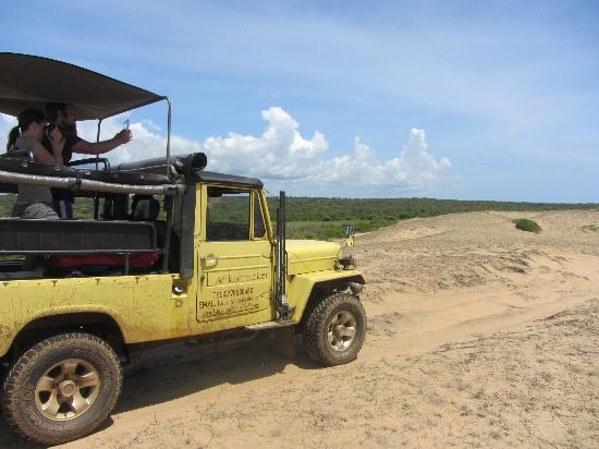 45e00fa80a5c Bundala National Park - Picture of Lanka Tracker - Day Tours