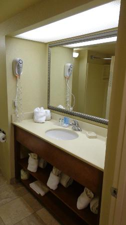 Hampton Inn St. Augustine Beach: Bath room