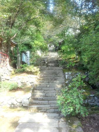 Chokokuji Temple: 境内