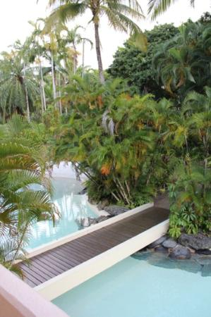 Sheraton Mirage Port Douglas Resort: View out the window