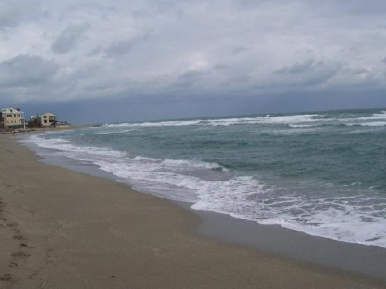 Bathtub Reef Beach: Beach