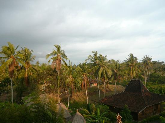 Istana Balian: Best View