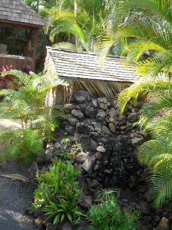 Maui Sunseeker LGBT Resort: Tool shed (reverse side) with waterfall feature.