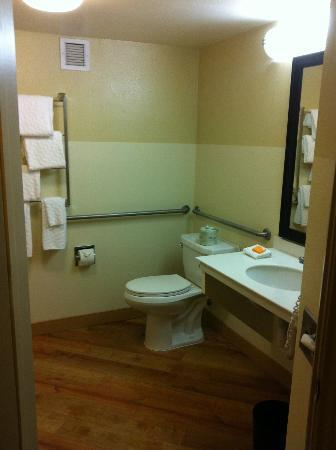 "La Quinta Inn & Suites Durham Research Triangle Pk: ""accessible"" bathroom"