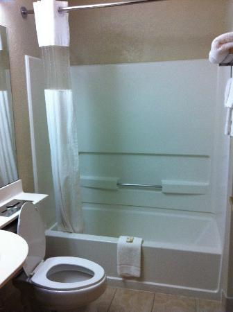 Microtel Inn by Wyndham Newport News Airport: bathroom