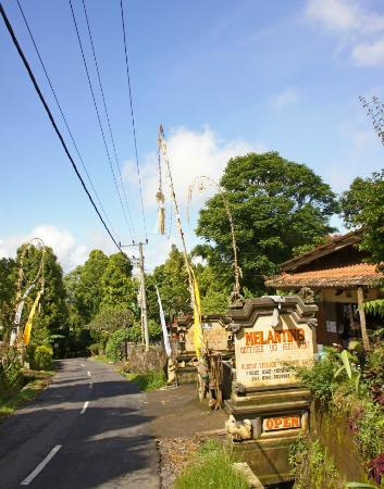 写真Melanting Cottages & Restaurant枚