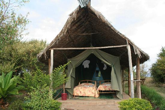 View of one of the tents at Miti Mingi Eco Camp