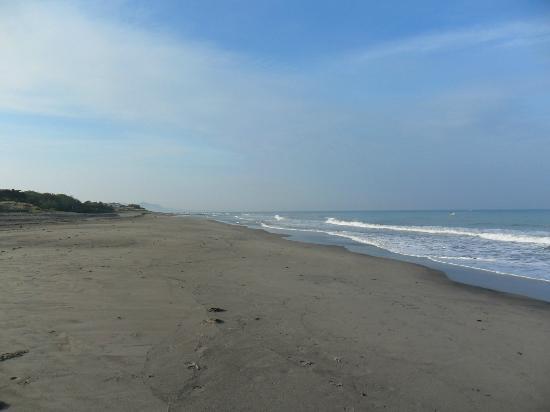 NorMi2's Beachfront Resort: beach looking south