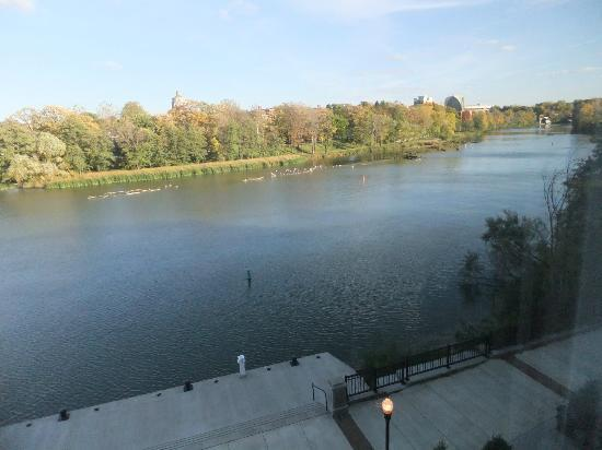 Staybridge Suites Rochester University: View from our suite.