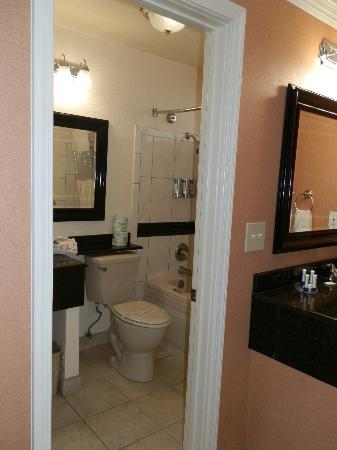 Park Vue Inn: bathroom