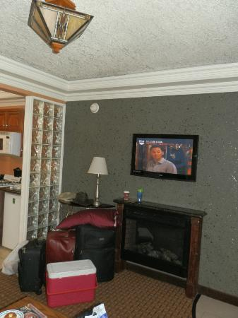 Park Vue Inn: flat screen tv above fireplace