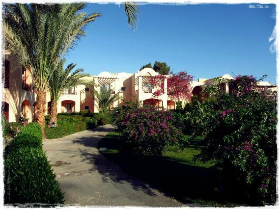 Iberotel Makadi Beach: Отель