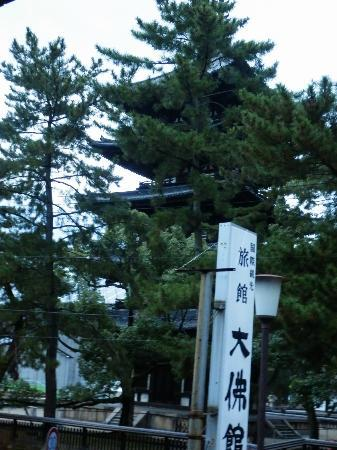 部屋からの眺め 興福寺五重の塔