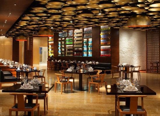 Radisson Blu Hotel New Delhi Dwarka Hotel Reviews