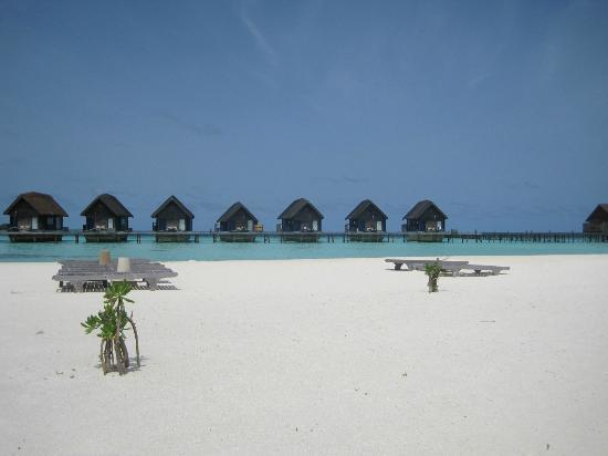 Cocoa Island by COMO: PACE DEI SENSI...