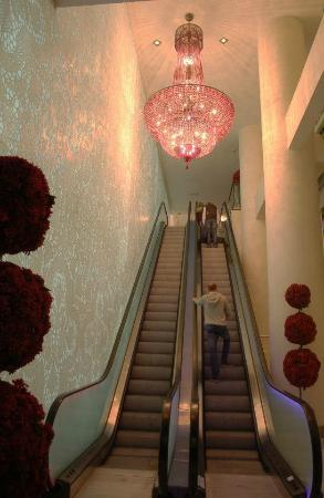 Sofitel Brussels Le Louise: Elevator into lobby