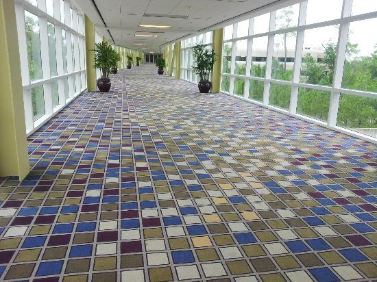 The Woodlands Waterway Marriott Hotel & Convention Center: Walkway