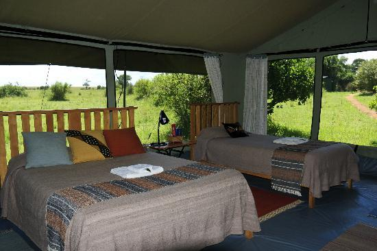Porini Lion Camp: Welcoming and comfortable