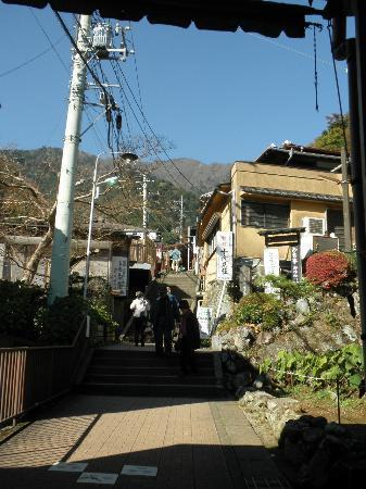 Isehara, Nhật Bản: 坂道