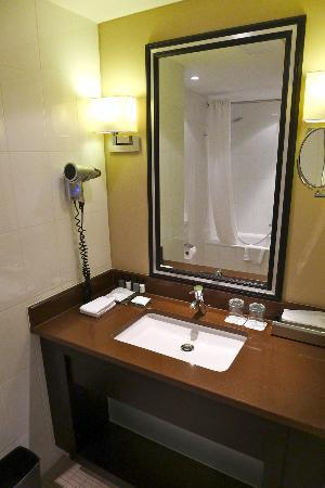 Renaissance Amsterdam Hotel: Luxury Bedroom bathroom