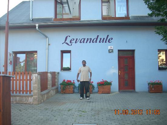 Levandule: The Hotel