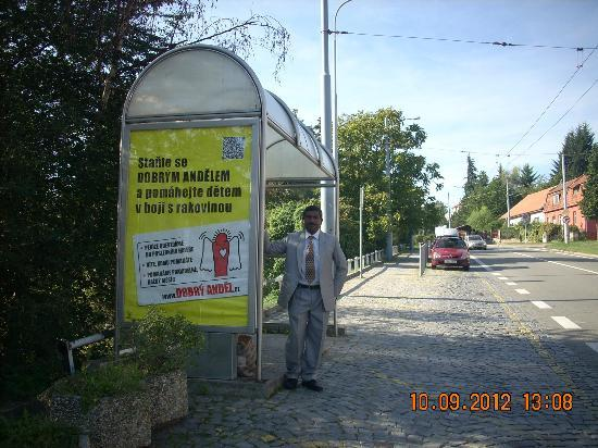 Levandule: Bus stop opposite the hotel