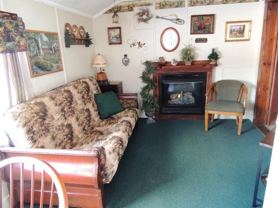 Carroll Motel & Cottages : Livingroom where the gas log was ...