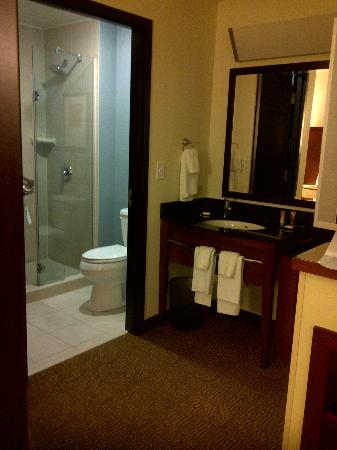 Hyatt Place West Palm Beach Downtown: Bathroom