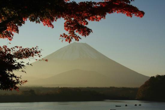 Lake Shoji : 精進湖湖岸の紅葉-5