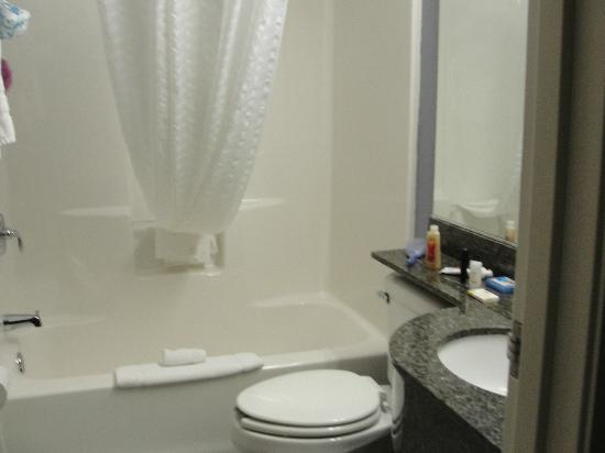 Microtel Inn & Suites by Wyndham Geneva: Very roomy bathroom