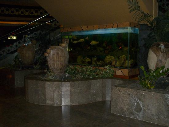 ‪‪Royal Dragon Hotel‬: Fish tank