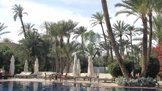 Club Med Marrakech le Riad: pool