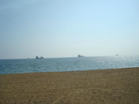 Manzanillo Bay: Just watching the world go by